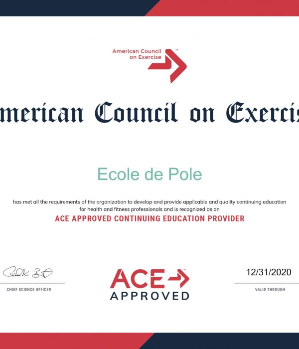 ACE-Course-Ecole de Pole2020